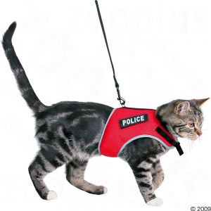 Postroj pro kočky XCat