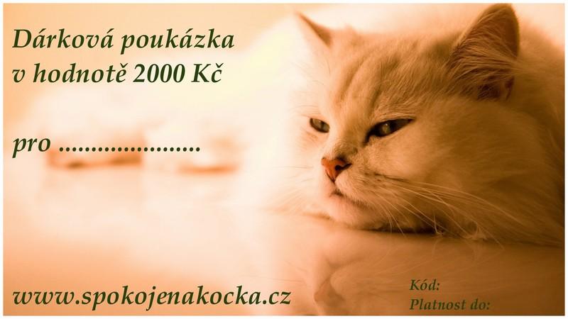Dárková poukázka v hodnotě 2000 Kč (Ve stylovém designu)