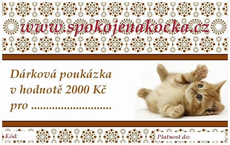 Dárková poukázka v hodnotě 2000 Kč - kotě (Ve stylovém designu)
