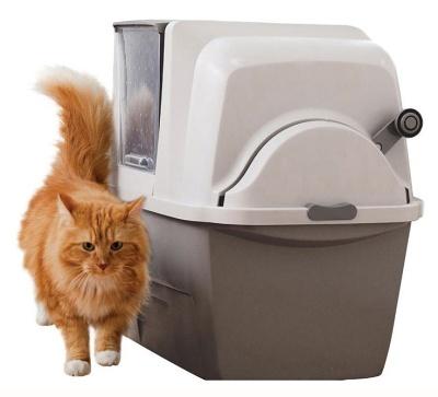 Toaleta CAT IT Design Sifting
