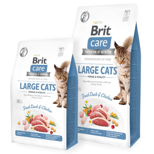 BRIT CARE Cat GF Large cats Power&Vitality 400g